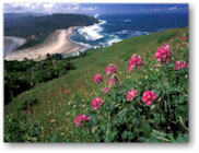 oregon coast specials and deals